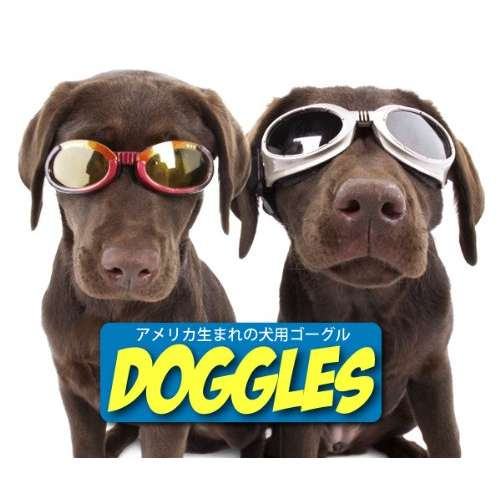 Doggles Racing Flames Hundebrille
