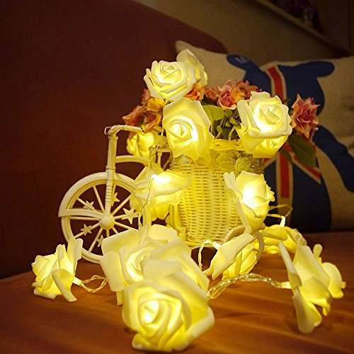Colleer 20er LED Rosen Lichterkette